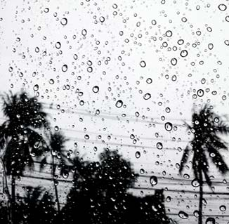 Hurricane and storm doors for coastal condos