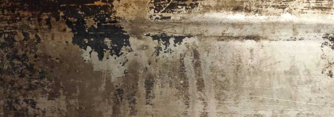 Moldy and moist home wall interior